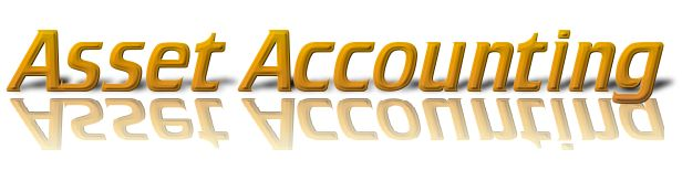 Asset accounting management services, Tax return preparation services